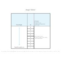 Anger Meter