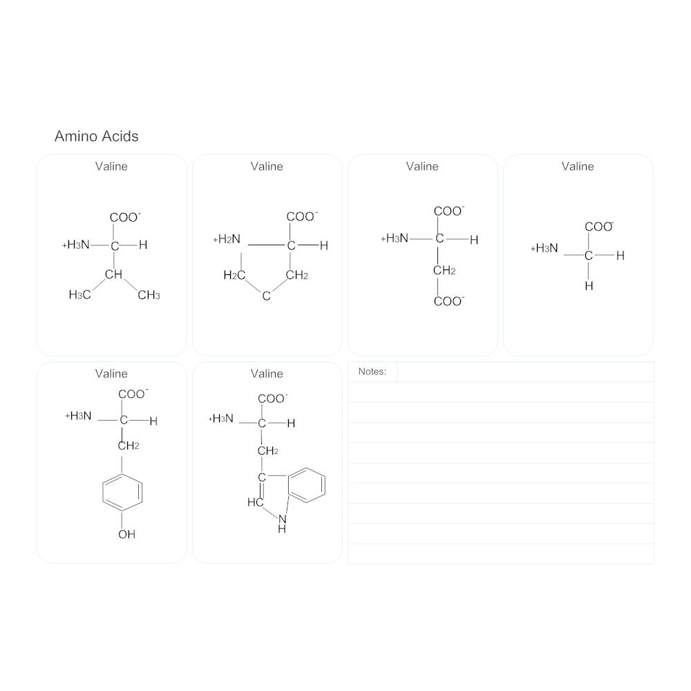 Example Image: Amino Acids - Biology Diagram