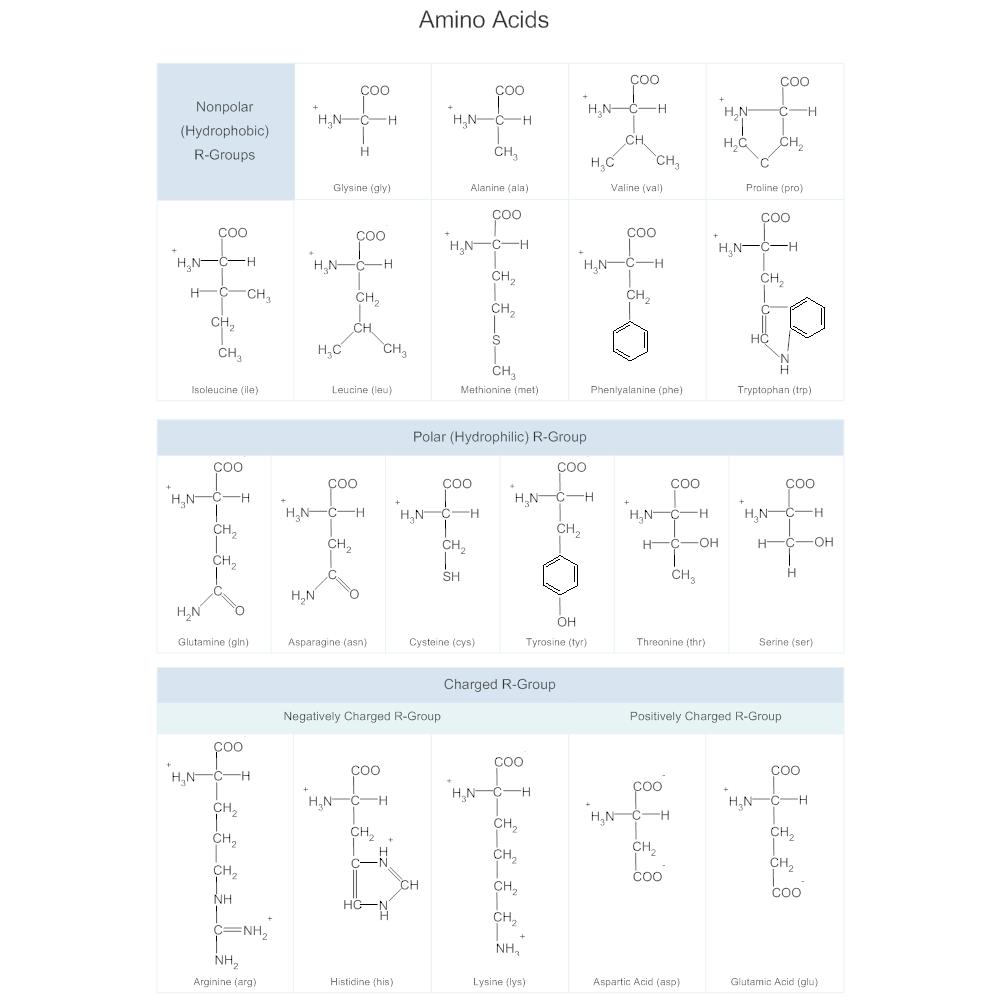 amino acids chart. Black Bedroom Furniture Sets. Home Design Ideas