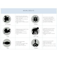 Animal Group Illustration