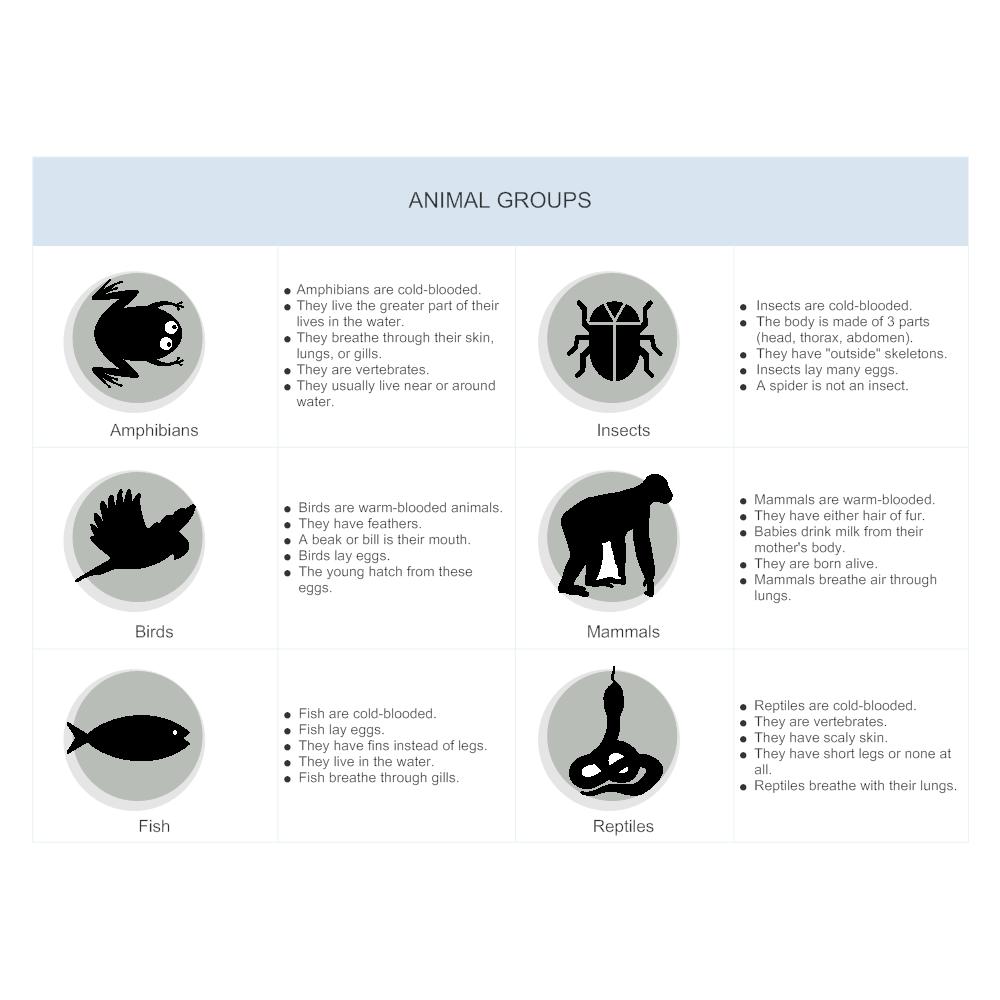 Example Image: Animal Group Illustration