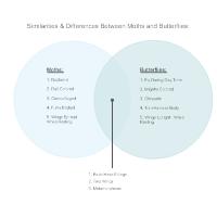 Biology diagram examples butterflies moths venn diagram ccuart Images