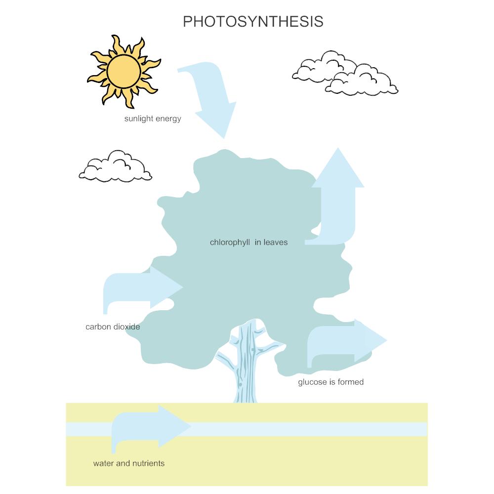 Photosynthesis diagram ccuart Choice Image
