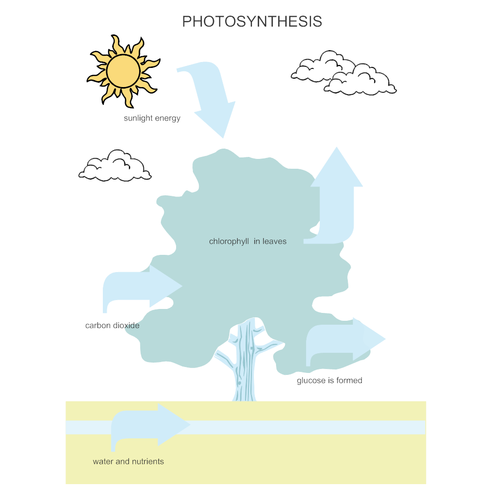 Example Image: Photosynthesis Diagram