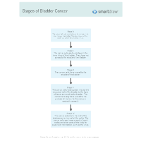 Stages of Bladder Cancer