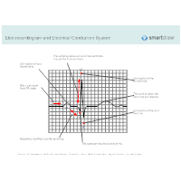 Electrocardiogram and Electrical Conduction System