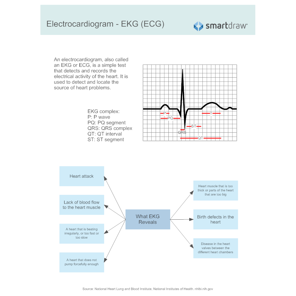 electrical and electrochemical activities of heart essay Since neurons form a network of electrical activities, they somehow have to be interconnected when a nerve signal, or impulse, reaches the ends of its axon, it has traveled as an action potential, or a pulse of electricity.