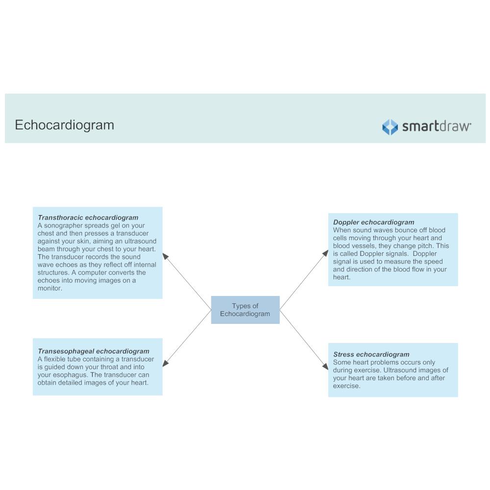Example Image: Echocardiogram