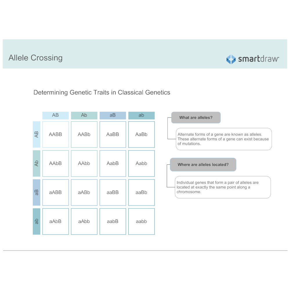Example Image: Allele Crossing
