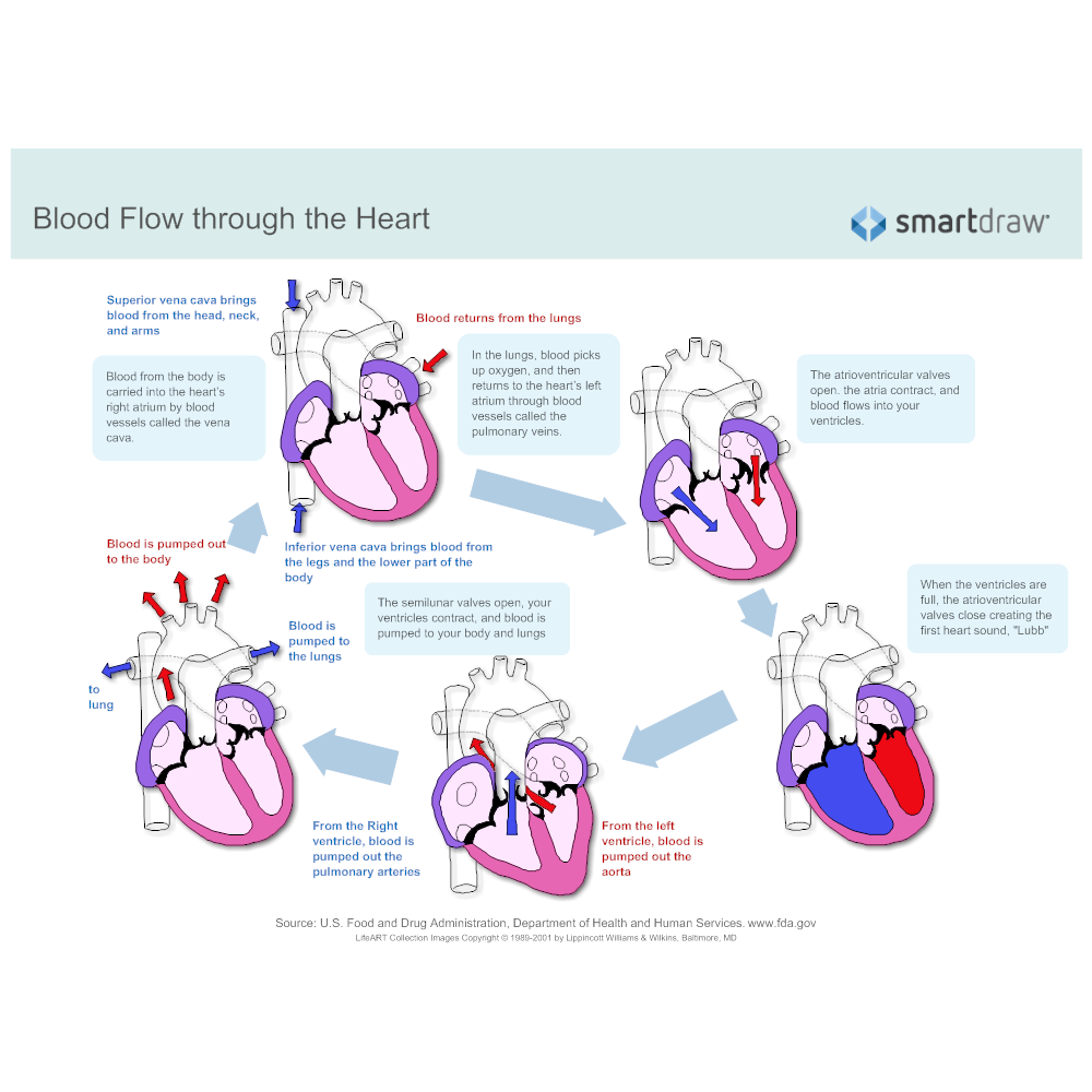 click to edit this example · example image: blood flow through the heart