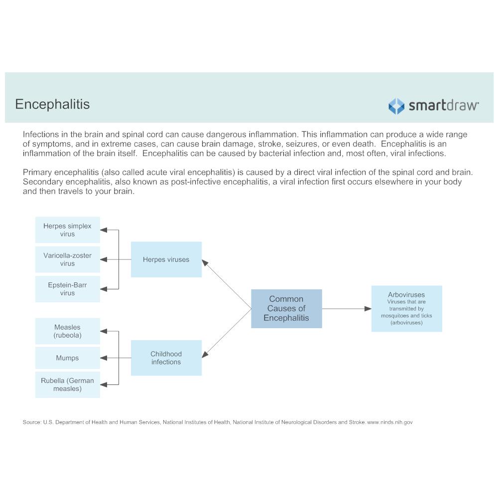 Example Image: Encephalitis