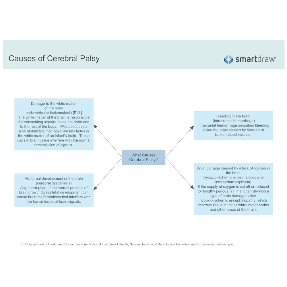 Example Image: Causes of Cerebral Palsy