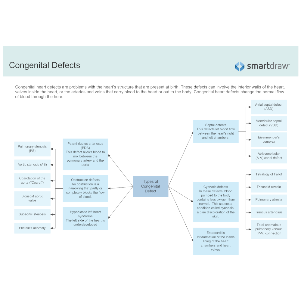Example Image: Types of Congenital Defect