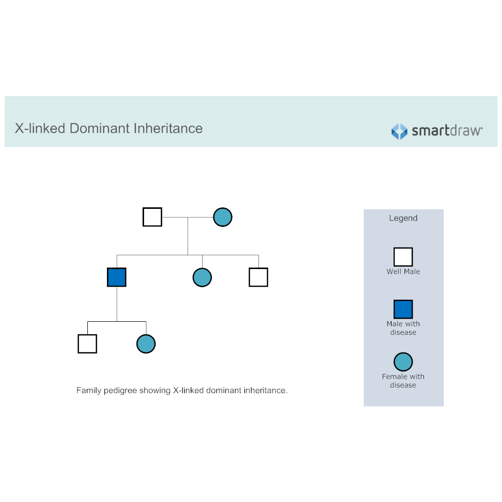 Example Image: X-linked Dominant Inheritance