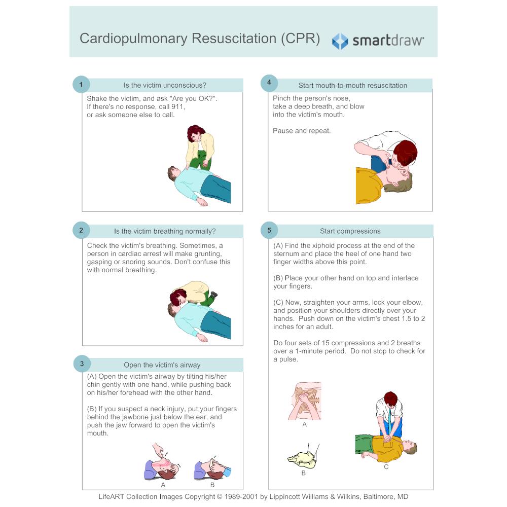 Example Image: CPR Diagram