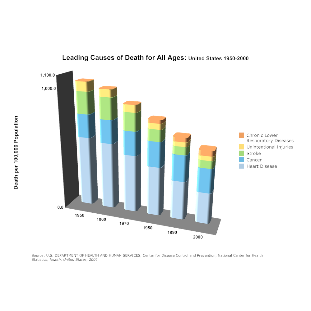 Example Image: Leading Causes of Death for All Ages Bar Graph