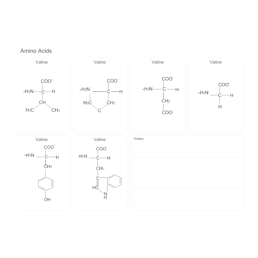 Example Image: Amino Acids - Biology Diagram