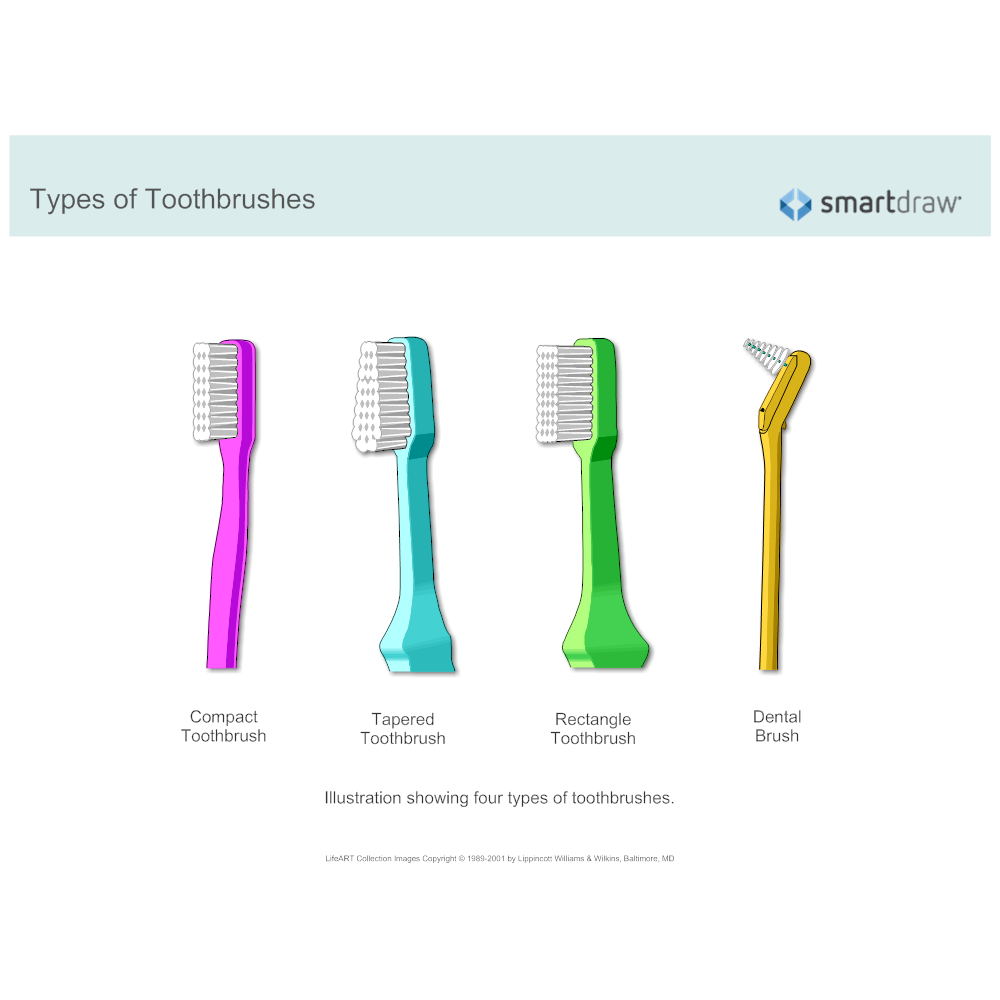 Example Image: Types of Toothbrushes
