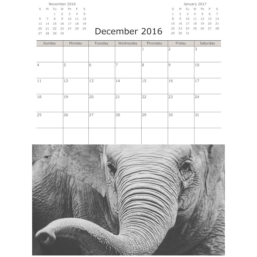 Example Image: Elephant Calendar