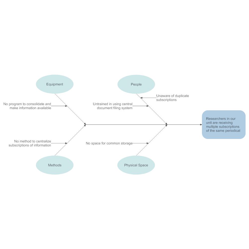 Example Image: Subscription Service Ishikawa Diagram