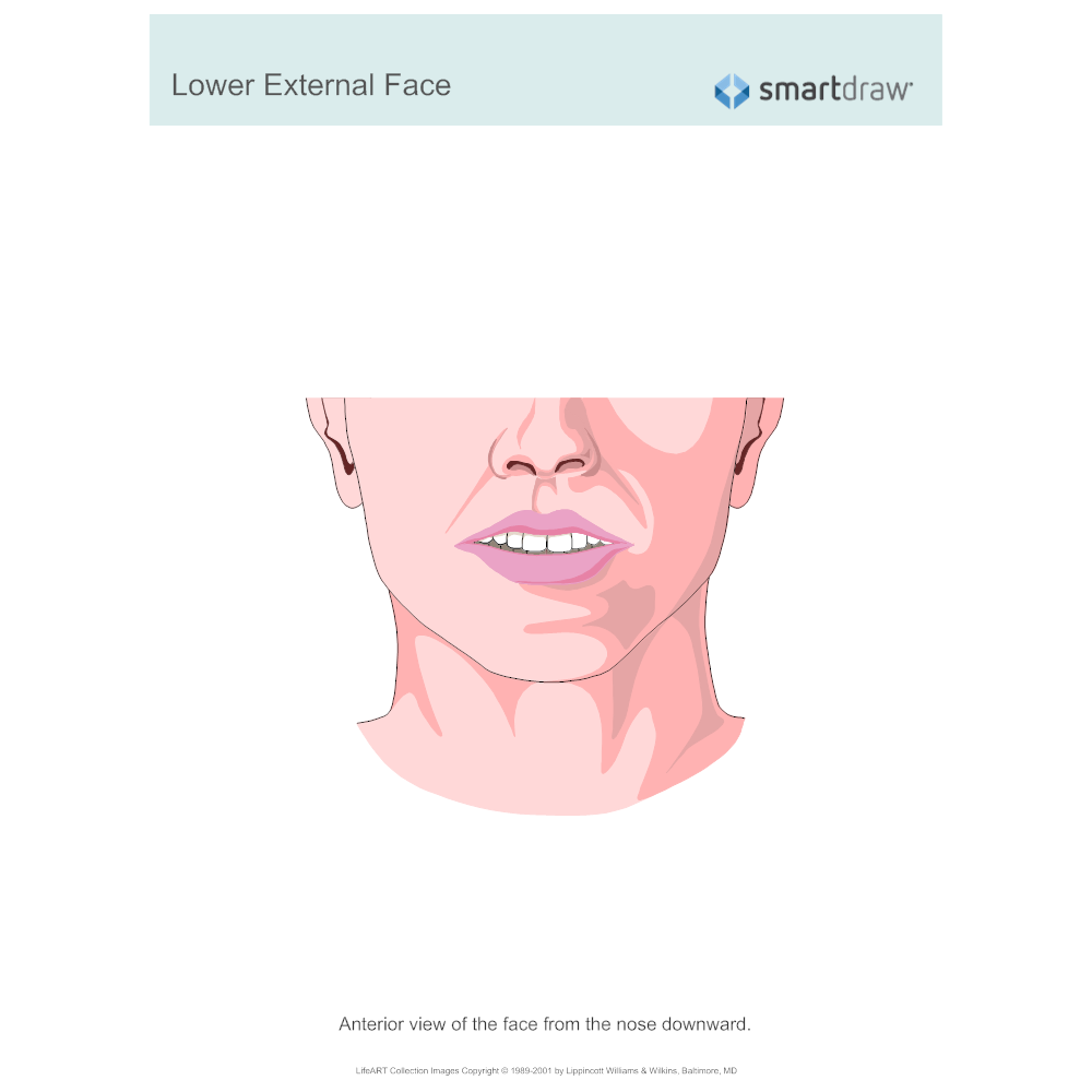 Example Image: Lower External Face