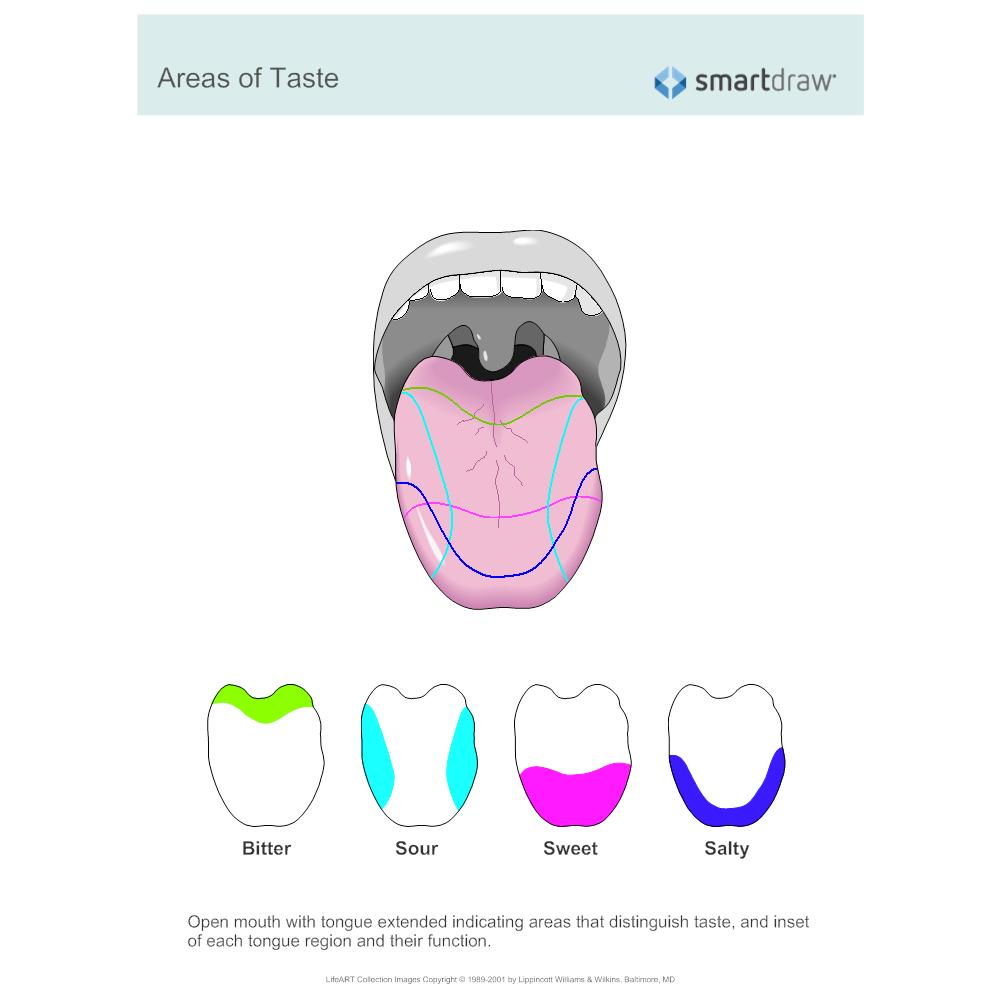 Example Image: Areas of Taste