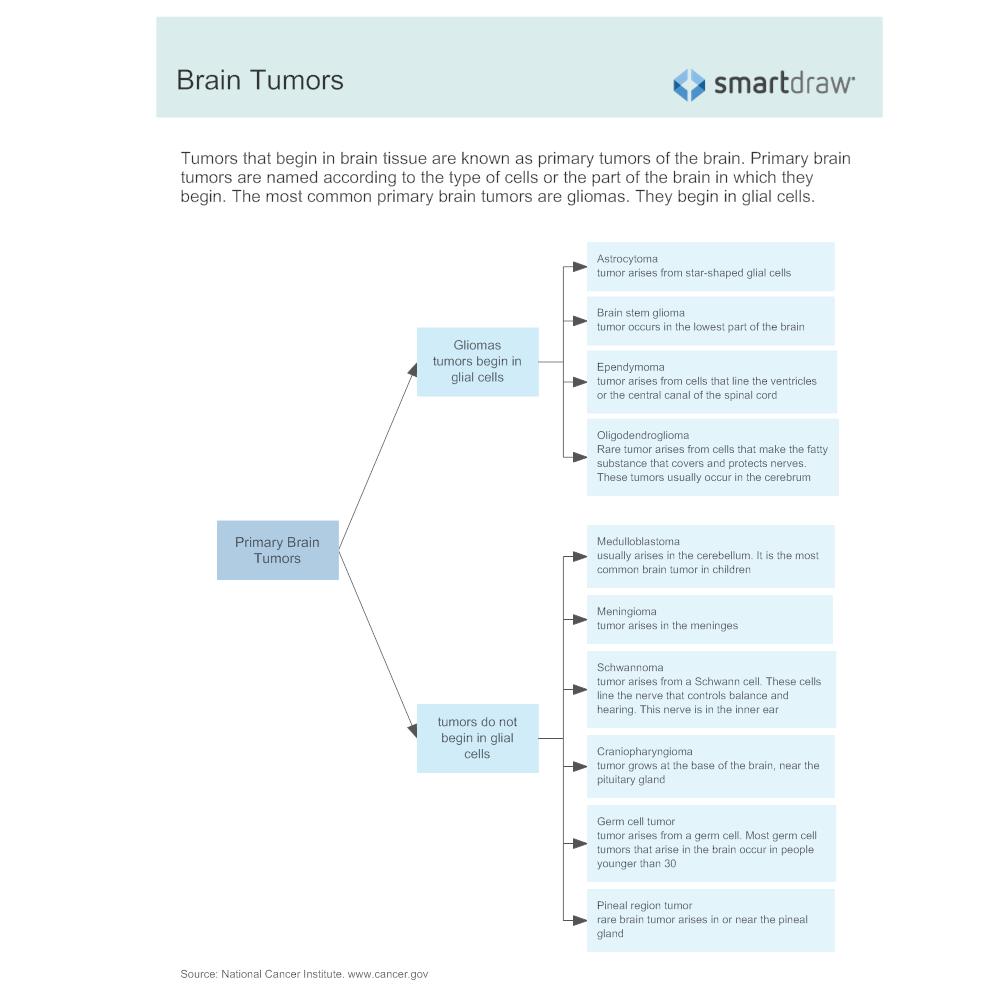 Example Image: Brain Tumors