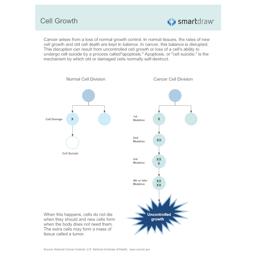 Example Image: Cell Growth
