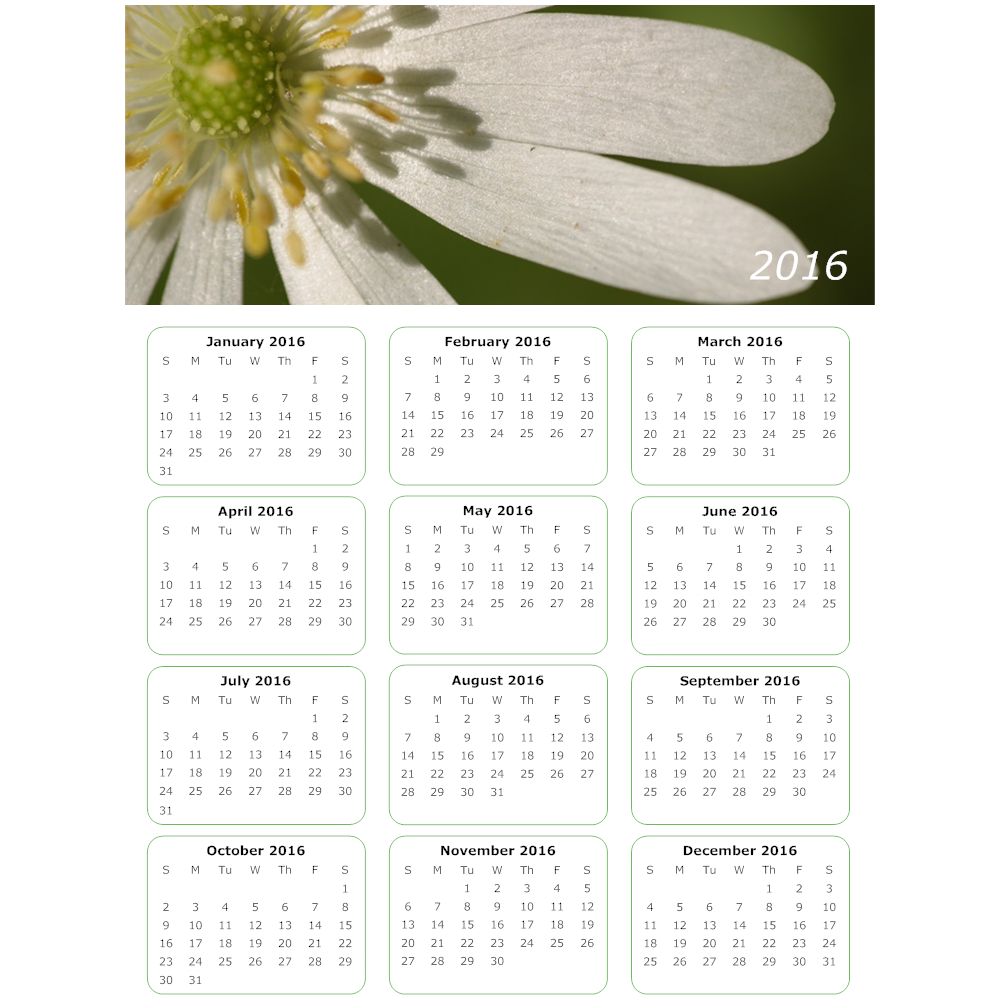 Example Image: Daisy Calendar