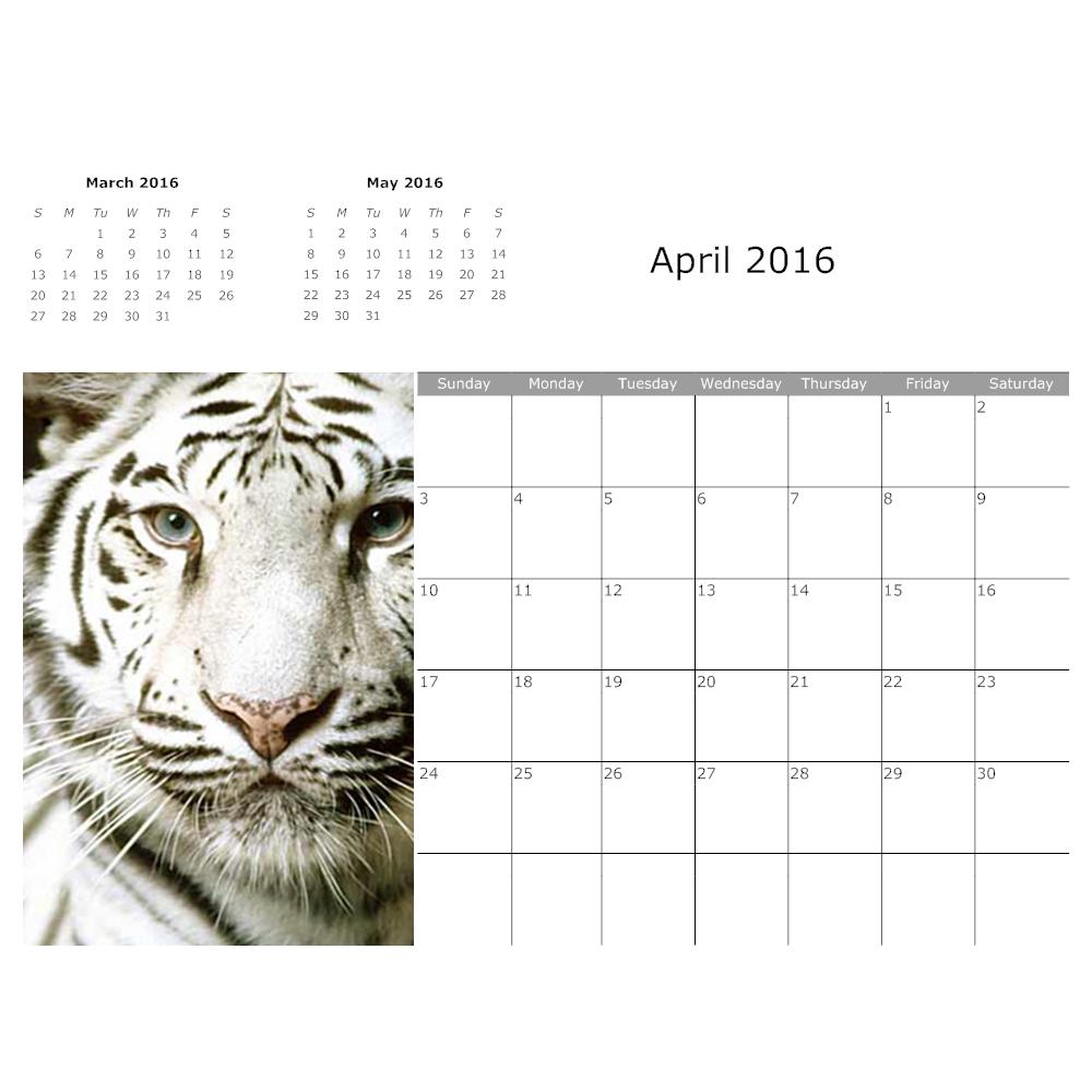 Example Image: Tiger Calendar