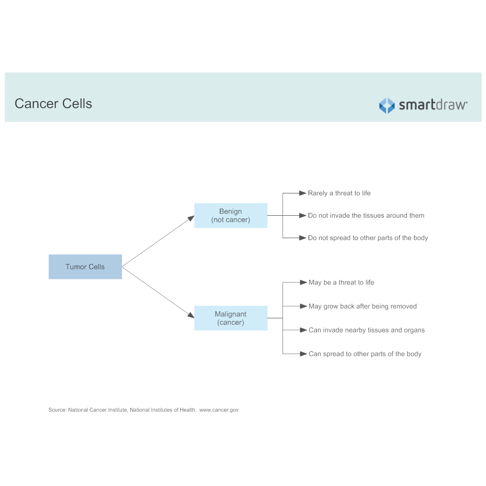 Example Image: Cancer Cells