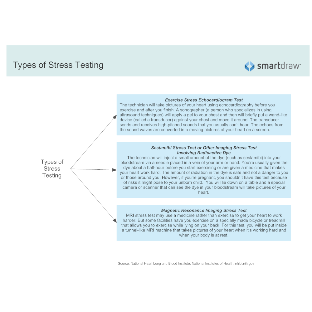 Example Image: Types of Stress Testing