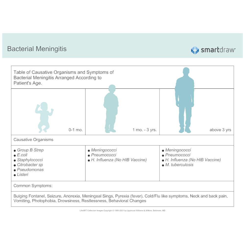 Example Image: Bacterial Meningitis