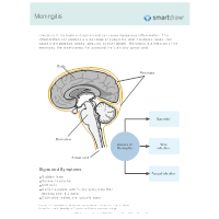 Infections of the Brain