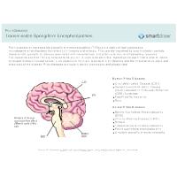 Transmissible Spongiform Encephalopathies