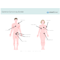 Common Cancers by Gender