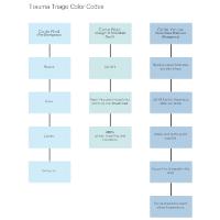 Trauma Triage Color Codes Flowchart