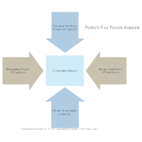 Five Forces Analysis Example - 2