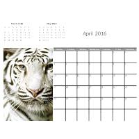 Tiger Calendar