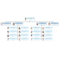Photo Organization Chart