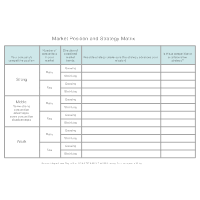 Market Position and Strategy Matrix