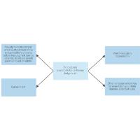 Procedures Used to Enforce Money Judgment