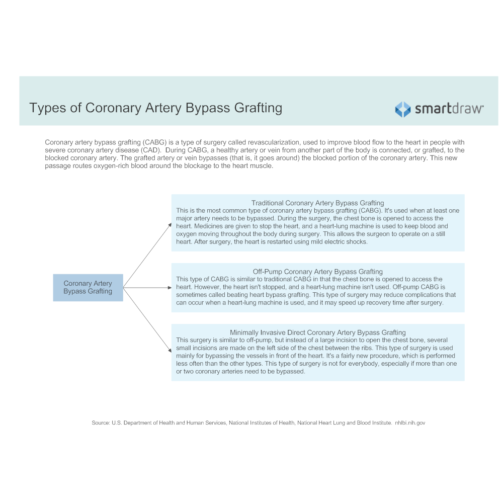 Example Image: Types of Coronary Artery Bypass Grafting