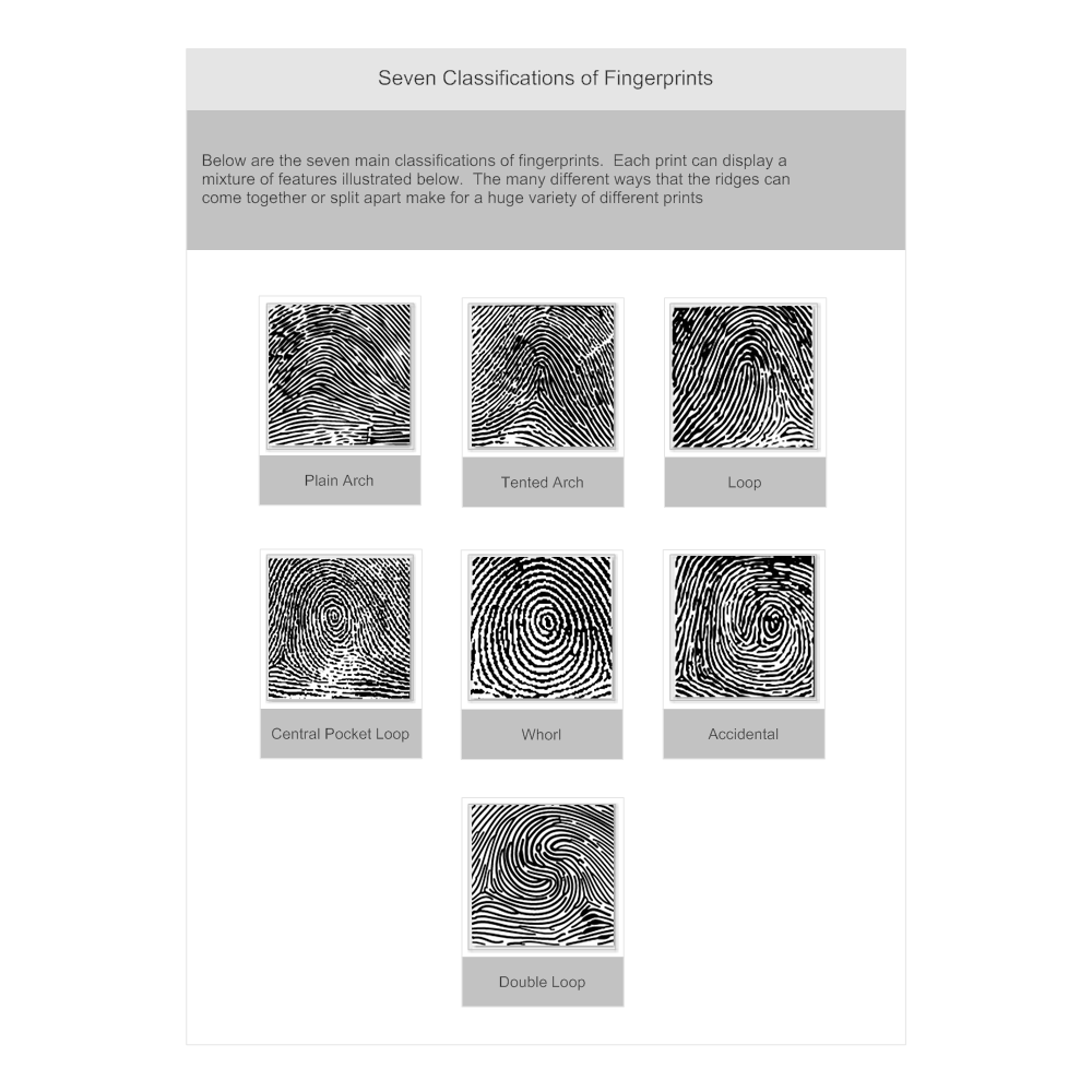 Example Image: Fingerprint Classifications