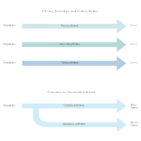 Models of Motive