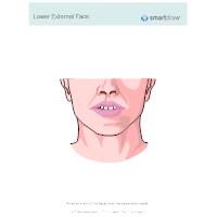 Lower External Face