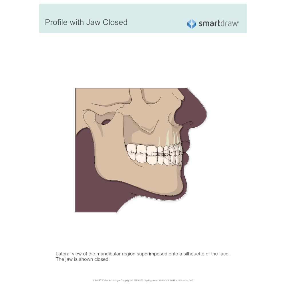 Example Image: Profile with Jaw Closed