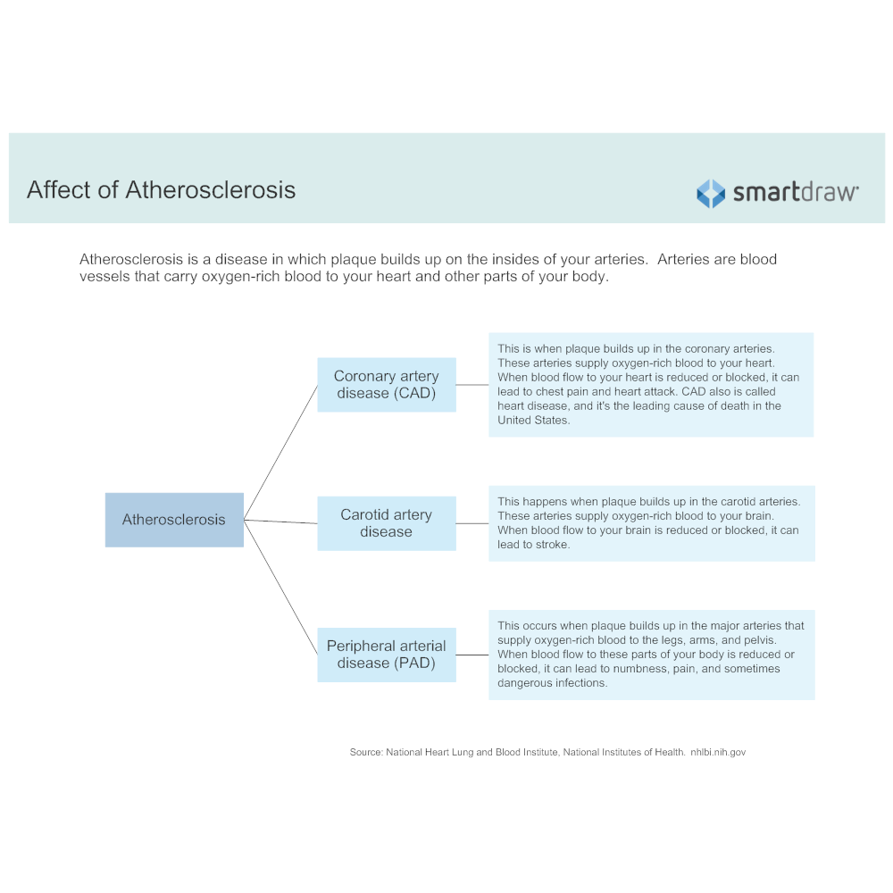 Example Image: Affect of Atherosclerosis