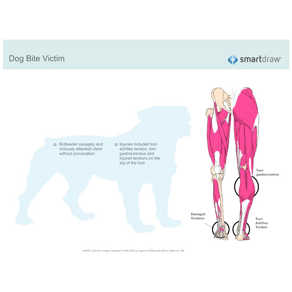 Example Image: Dog Bite
