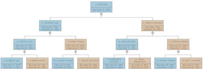 Family Tree  Everything You Need To Know To Make Family Trees